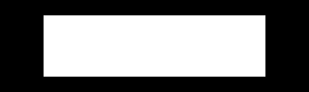 BW Institute transparent logo